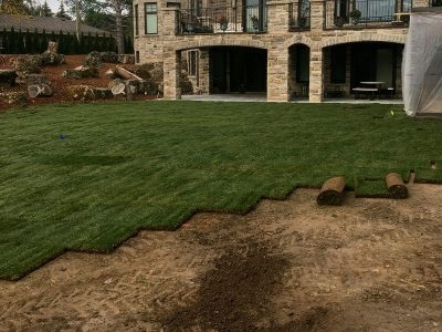Mr.Sod - The Sod Installation Specialist